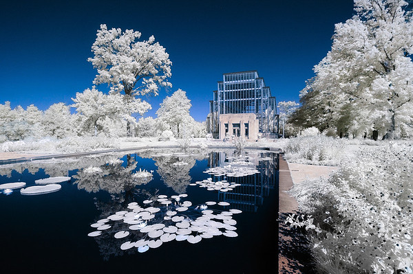 The Jewel Box September 20, 2008  Captured with a IR-converted Nikon D70s