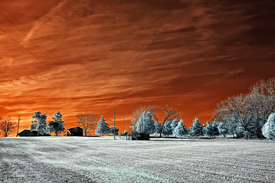 Red Sky  January 10, 2009  Captured with an infrared-converted Nikon D70s.